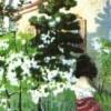 Спектакль «Вишневый сад»