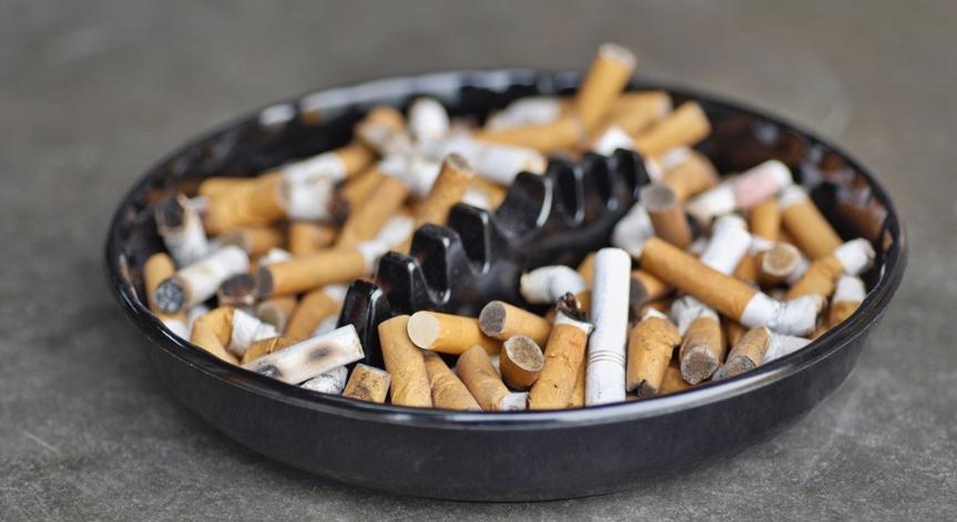 Табачные изделия ижевске заказать сигареты от захаров